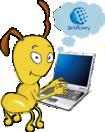 блог Webmoney